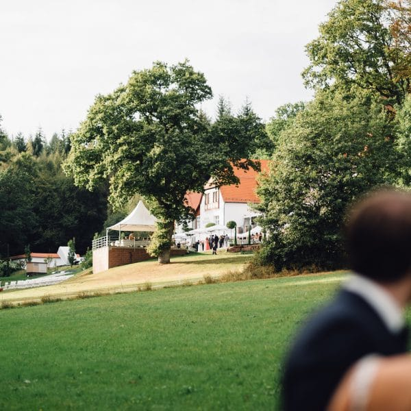 Hochzeit umgeben von Wald und Wiesen